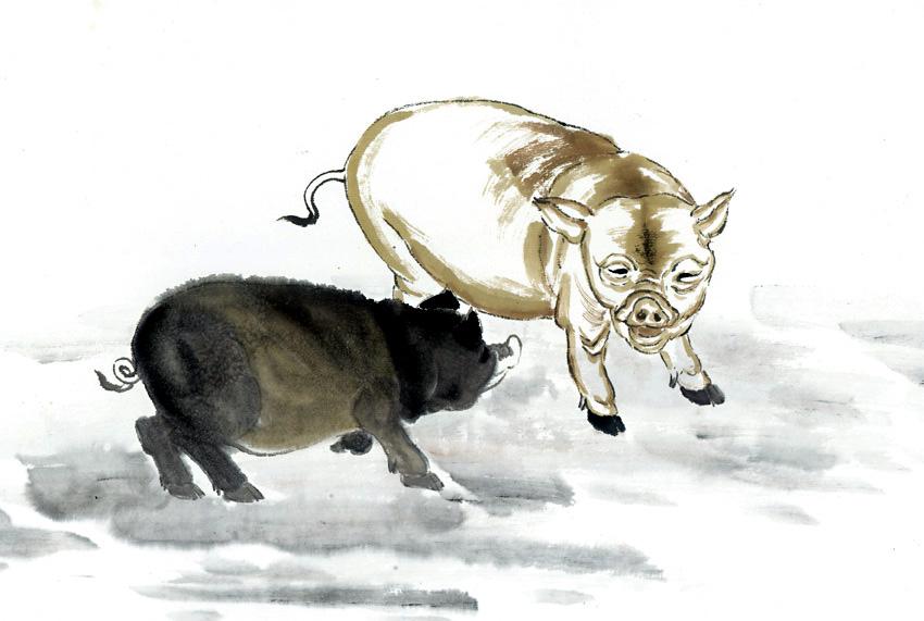 Ramalan Shio Babi Hari Ini.jpg